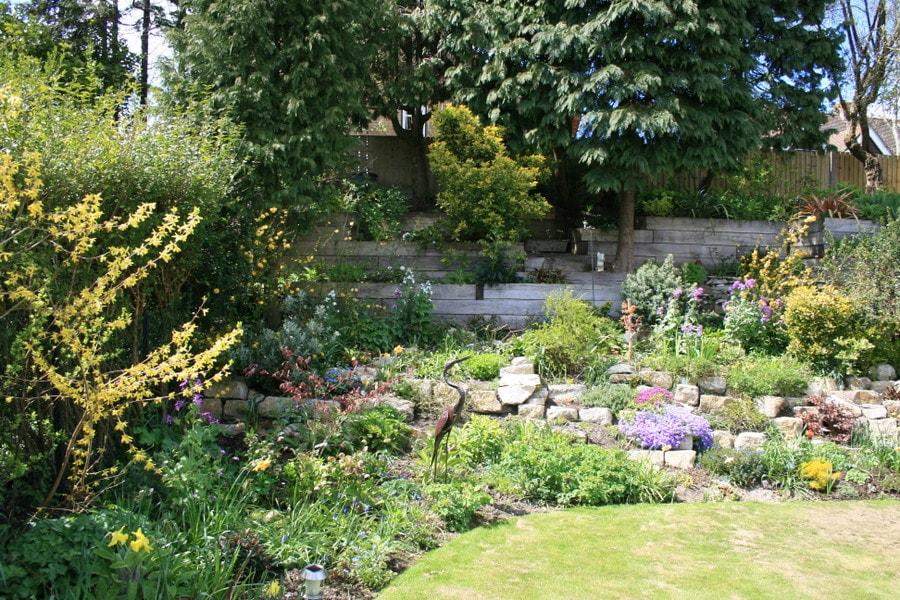 Garden 004 killen landscapes garden design bournemouth for Garden design bournemouth