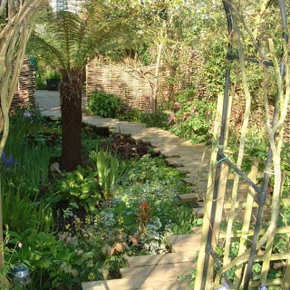 floating board path and bog garden-