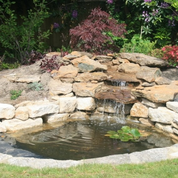 Water features in your garden